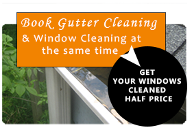 gutter and window cleaning half price offer